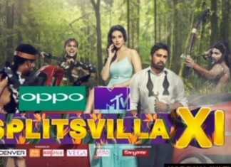 Splitsvilla 11 Winner