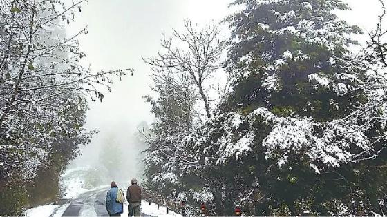 snowfall in india 2020 almora