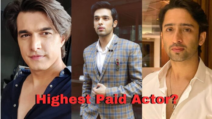 highest-paid television actor